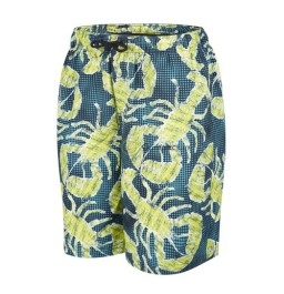 "Speedo Boys Printed Leisure 17"" watershorts"
