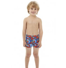 Speedo Boys' Seaquad  Allover  Aquashort  Blue/Blue